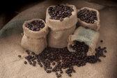 Taza de café y granos sobre un fondo blanco. — Foto de Stock