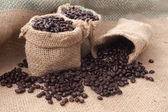 Coffee Beans in a Bag — Stock Photo