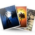 Photos icon. Vector illustration — Stock Vector #12679026