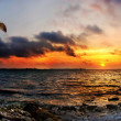 Striking sunset above the sea — Stock Photo