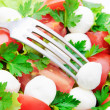 Fresh vegetable salad with tomatos, cheese mozzarella and greens — Stock Photo