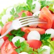 Fresh vegetable salad with tomatos, cheese mozzarella and greens - Stock Photo