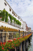 Venice seafront with red flowers, Italy — Stock Photo