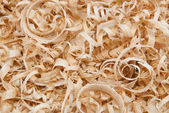 Wood chips and sawdust texture or background — Stock Photo