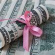 Dollars with satin ribbon bow — Stock Photo #22517201