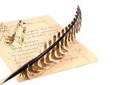 гусиное перо и бумагу листа полный примечания — Стоковое фото