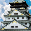 Osaka Castle (Osaka Fortress) in Osaka, Japan, closeup — Foto Stock