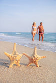 Couple walking on sea sand beach against starfishes — Stock Photo