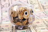 Besparingen in piggy bank geïsoleerd op dollar bankbiljet achtergrond — Stockfoto