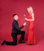 A man with rose flower bend the knee a woman against red background — Stock Photo