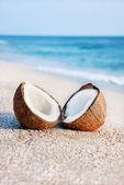 Две половинки кокоса против морской морской песок пляж — Стоковое фото