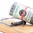 Dollar banknotes roll in mousetrap — Stock Photo