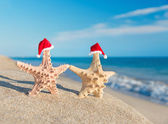 Sea-stars couple in santa hats walking at beach. Holiday concept — Stock Photo