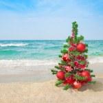 Christmas tree on the sea beach. Christmas vacation concept. — Stock Photo