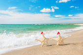 Sea-stars couple in santa hats walking at sea beach. New Years d — Stock Photo