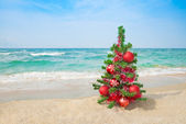 Christmas tree on the sea beach. Christmas vacation concept. — Stock Photo