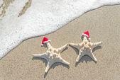 Sea-stars couple in santa hats on the sand. — Stock Photo