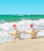Sea-stars couple in santa hats walking at sea beach. — Stock Photo
