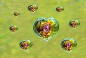 Beaucoup de coeur en forme des bulles de savon irisées — Photo