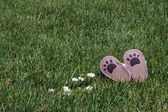 Little shoes on grass — Stock Photo