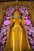 Afbeelding van boeddha — Stockfoto