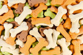 Backgrounds of color full bone shaped dog treats — Stock Photo