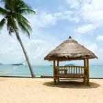 Tropical gazebo with chairs on amazing beach palm tree — Stock Photo