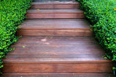 Wood stair way on green garden — Stock Photo