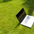 Notebook on the green field of spring grass — Stock Photo