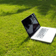 Stock Photo: Notebook on the green field of spring grass