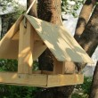 Nesting box in a tree — Stock Photo