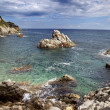 Landscapes of the Costa Brava — Stock Photo