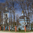 Orthodox Church, Kaluga — Stock Photo #25124789