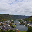 Mosel view — Stock Photo #17353469