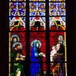 Stained glass window — Stock Photo #17356813