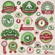 Vintage organic label set template  — Stock Vector