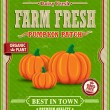 Vintage farm fresh pumpkin patch poster design — 图库矢量图片