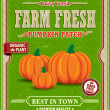 Vintage farm fresh pumpkin patch poster design — Stok Vektör
