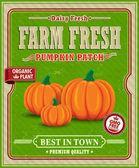 Vintage farm fresh pumpkin patch poster design — Stock Vector