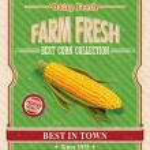 Vintage farm fresh organic corncob poster — Stock Vector #30239509