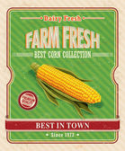 Vintage farm fresh organic corncob poster — Stock Vector