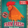 Vintage organic farm fresh rooster poster design — Stock Vector #51645289