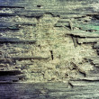 Old wood background — Stock Photo #31474875