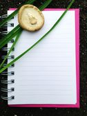 Paper notebook page — Stock Photo