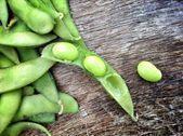 Fresh soybeans. — Stock Photo