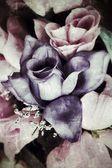 Bella rosa — Foto Stock