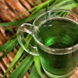 Wheat grass juice — Stock Photo