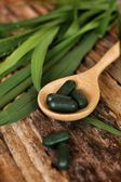 Chlorophyll pill — Stock Photo