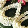 White jasmine garland — Foto Stock