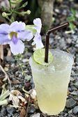 柠檬饮料 — 图库照片